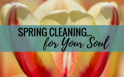 Spring Cleaning… For Your SOUL